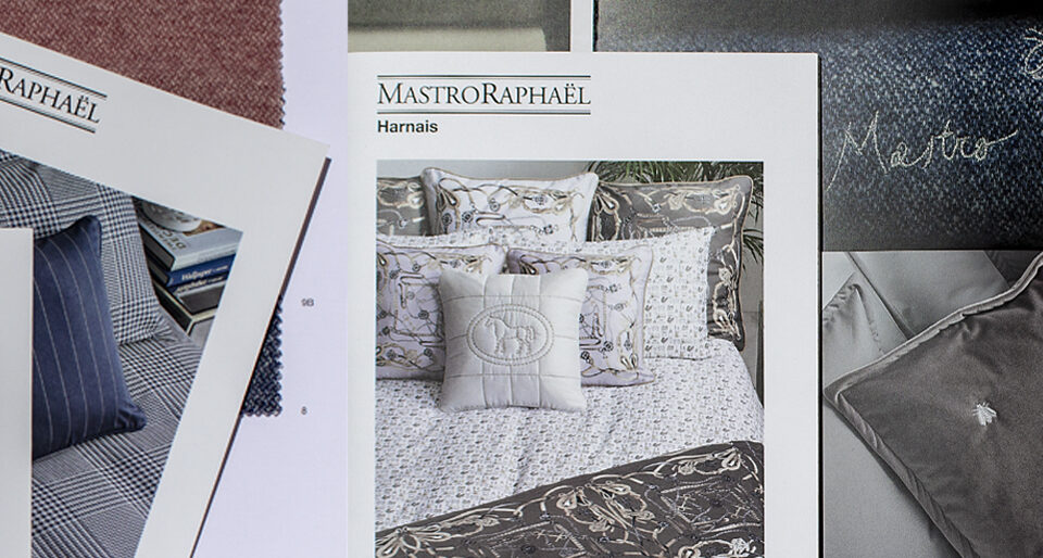 Grafica editoriale Mastro Raphael